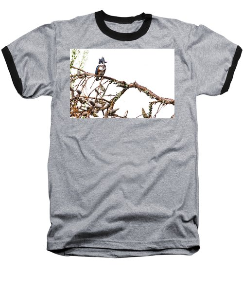 Belted Kingfisher Baseball T-Shirt