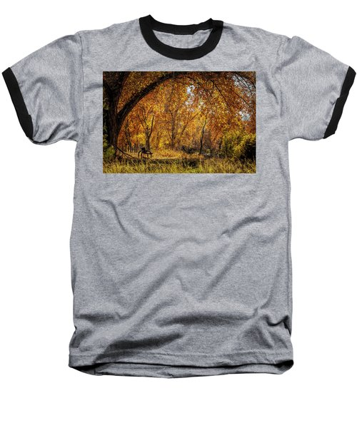 Bench With Autumn Leaves  Baseball T-Shirt