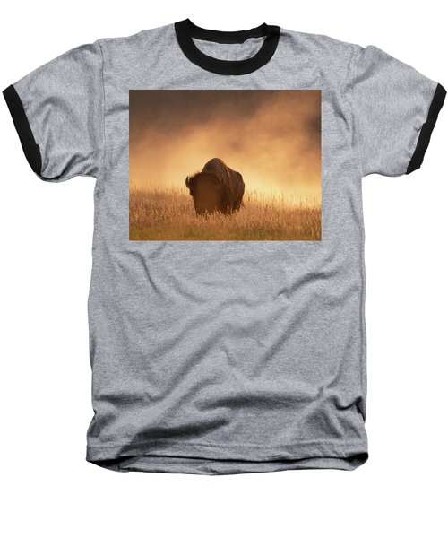Bison In The Dust 2 Baseball T-Shirt