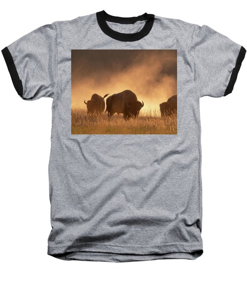 Bison In The Dust Baseball T-Shirt