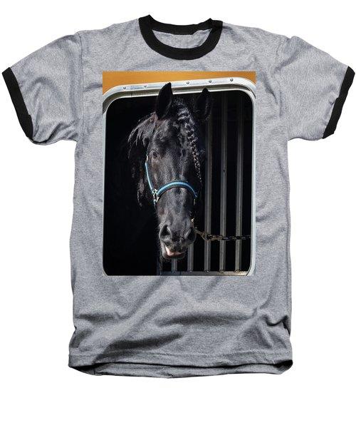 Black Beauty Baseball T-Shirt