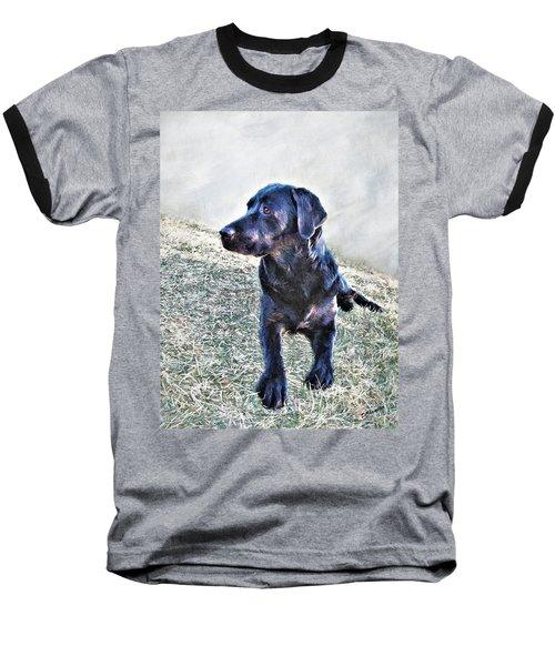 Black Labrador Retriever - Daisy Baseball T-Shirt