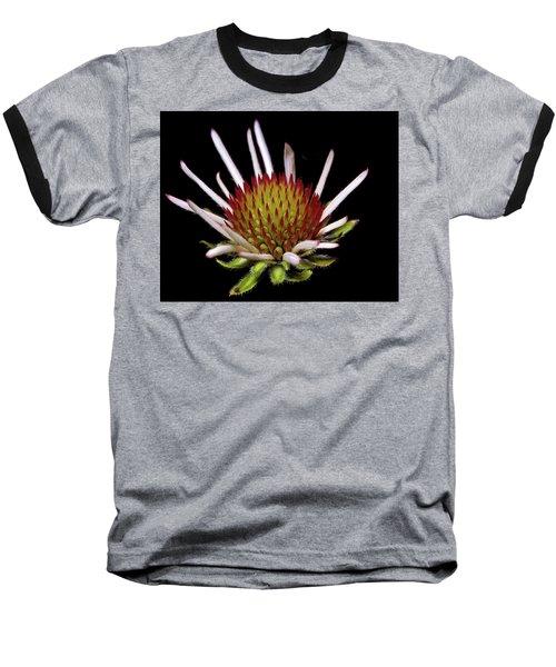 Black Sampson Baseball T-Shirt