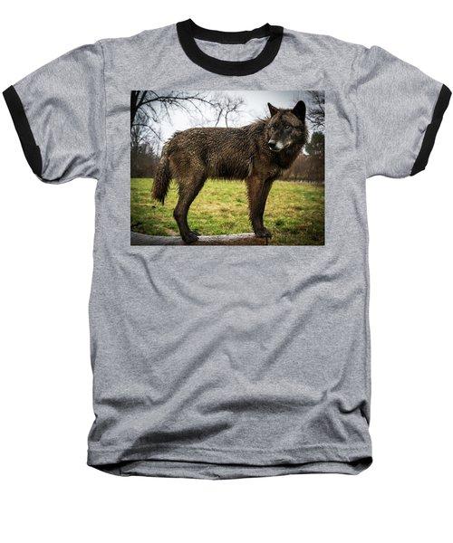 Black Wolf Baseball T-Shirt
