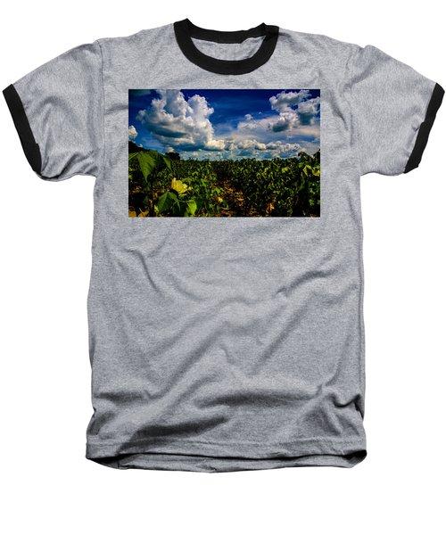 Blooming Cotton  Baseball T-Shirt