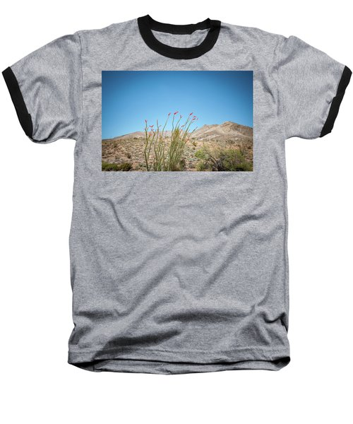 Blooming Ocotillo Baseball T-Shirt