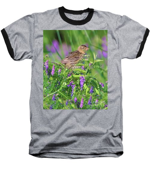 Bobolink Baseball T-Shirt