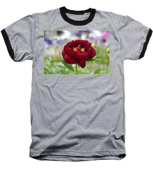 Bold Garnet Baseball T-Shirt