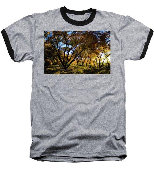 Bosque Color Baseball T-Shirt