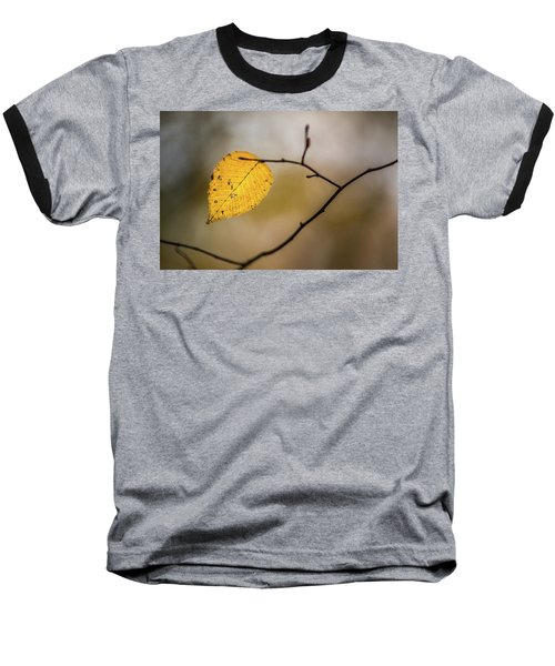 Baseball T-Shirt featuring the photograph Bright Fall Leaf 10 by Michael Arend