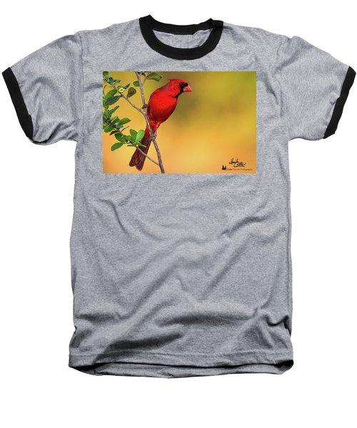Bright Red Cardinal Baseball T-Shirt