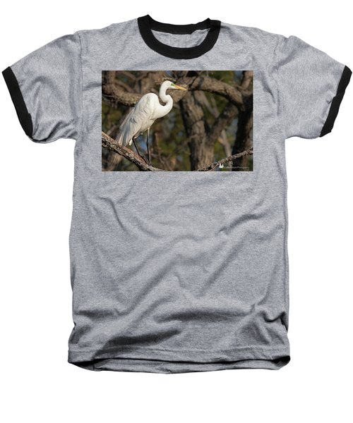 Bright White Heron Baseball T-Shirt
