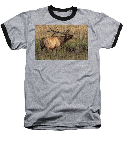 Bugling Bull Elk 7777 Baseball T-Shirt