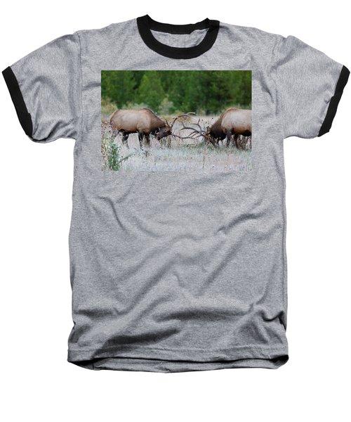 Bull Elk Battle Rocky Mountain National Park Baseball T-Shirt
