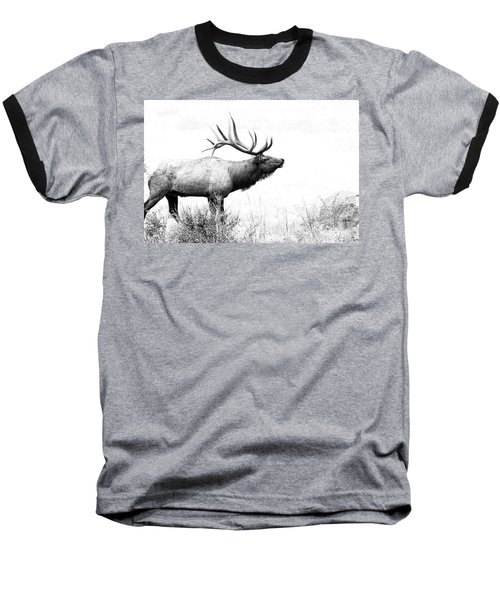 Bull Elk In Rut Baseball T-Shirt