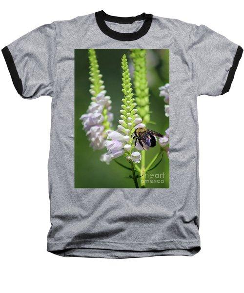 Bumblebee On Obedient Flower Baseball T-Shirt