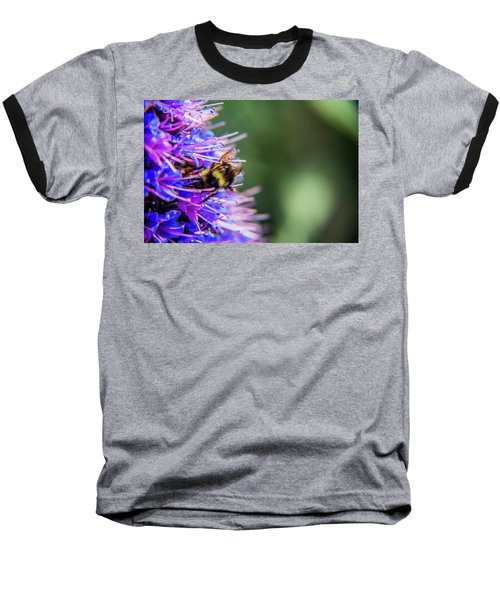 Busy Bee 2 Baseball T-Shirt