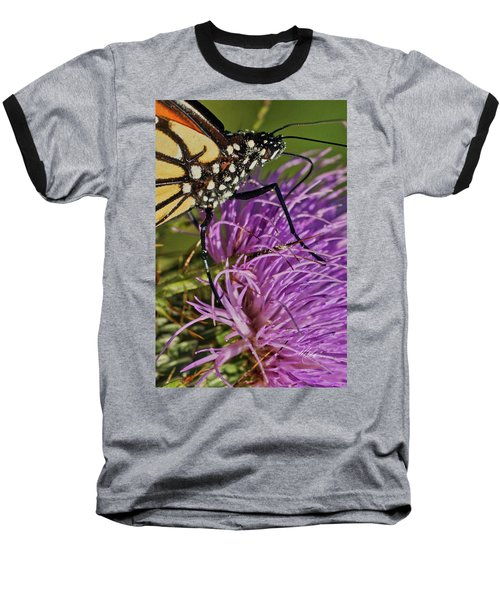 Butterfly Closeup Vertical Baseball T-Shirt