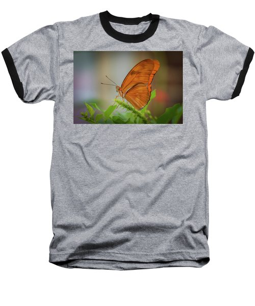 Butterfly, Delicate Wings... Baseball T-Shirt