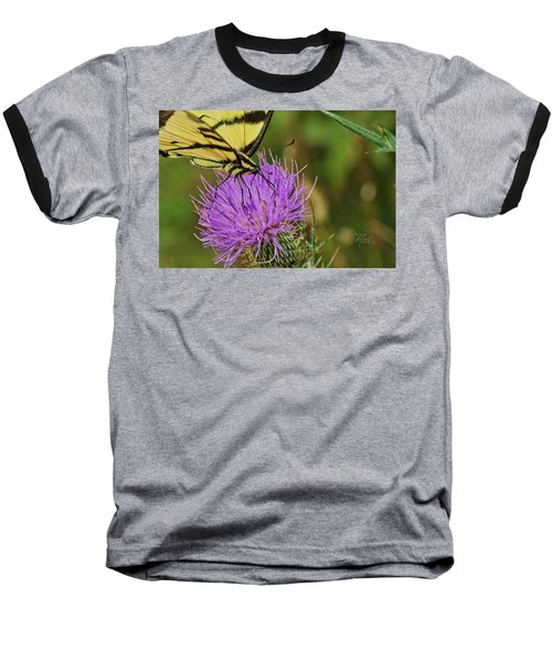 Butterfly On Bull Thistle Baseball T-Shirt