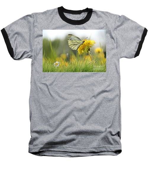 Butterfly On Dandelion Baseball T-Shirt
