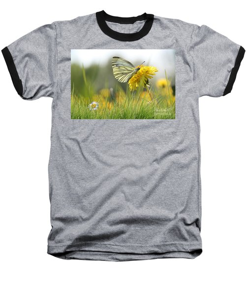 Butterfly On Dandelion Baseball T-Shirt
