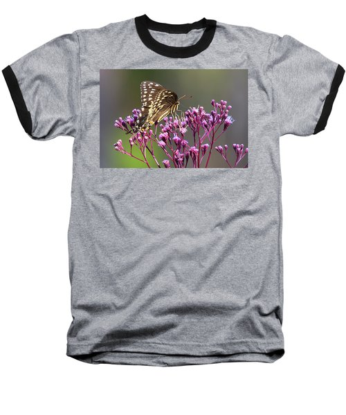 Butterfly On Wild Flowers Baseball T-Shirt