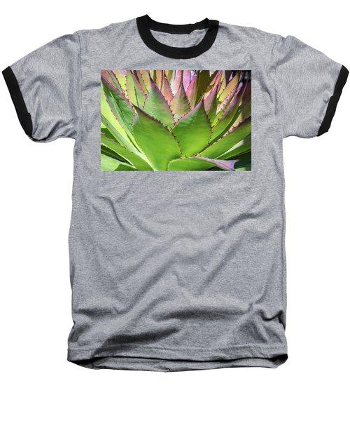 Cactus 4 Baseball T-Shirt