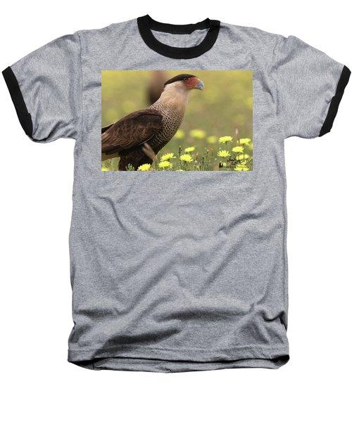 Caracara In Wildflowers Baseball T-Shirt