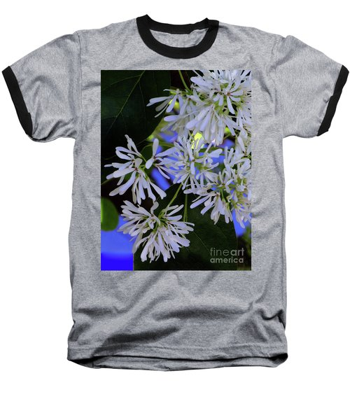Carly's Tree - The Delicate Grow Strong Baseball T-Shirt
