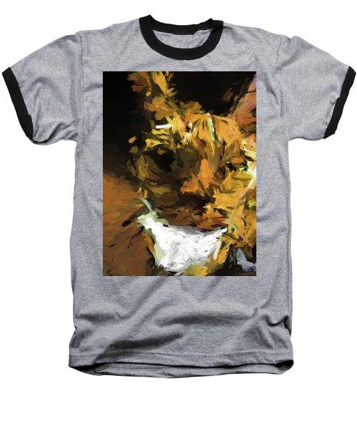 Cat Up Close Baseball T-Shirt