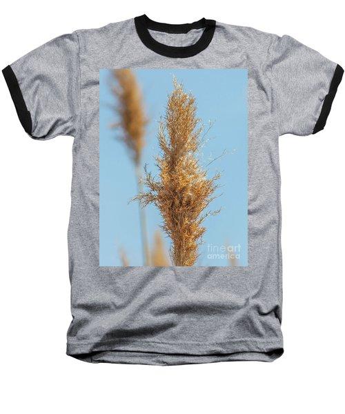 Cattail  Baseball T-Shirt