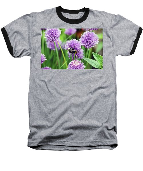Chorley. Picnic In The Park. Bee In The Chives. Baseball T-Shirt