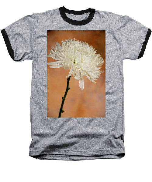 Chrysanthemum On Canvas Baseball T-Shirt