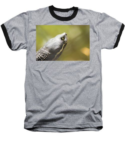 Close Up Of A Turtle. Baseball T-Shirt