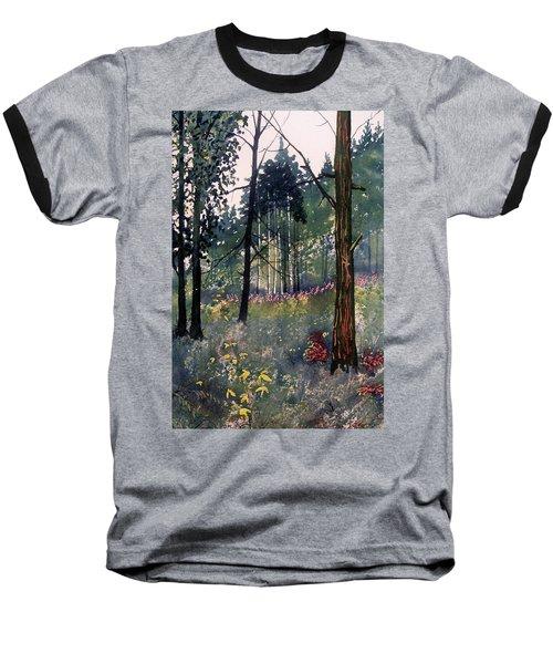 Codbeck Forest Baseball T-Shirt