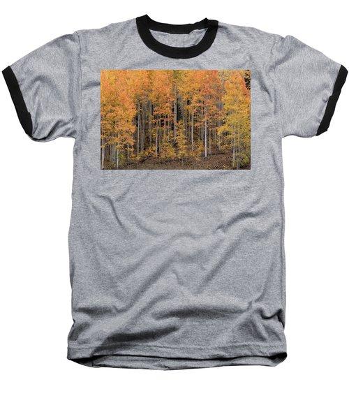 Colorado Guardians Baseball T-Shirt