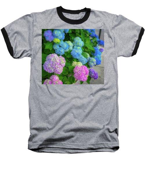 Colorful Hydrangeas Baseball T-Shirt