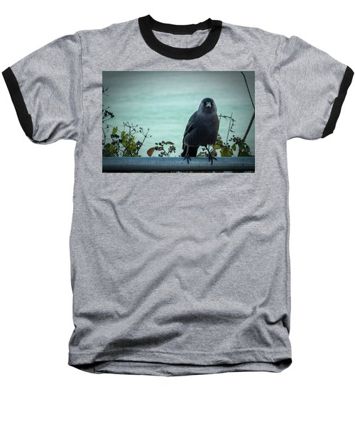 Cornish Crow Baseball T-Shirt