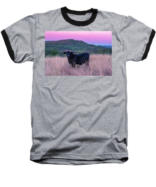 Cow Outside In The Paddock Baseball T-Shirt