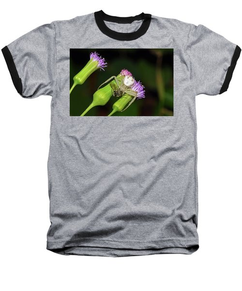 Crab Spider With Bee Baseball T-Shirt