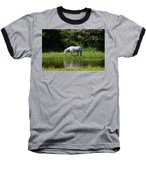 Cumbria. Ulverston. Horse By The Canal Baseball T-Shirt