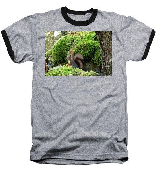 Curious Squirrel Baseball T-Shirt