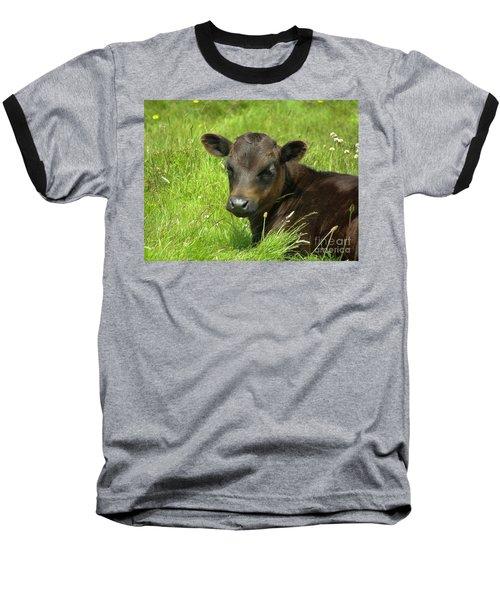 Cute Cow Baseball T-Shirt