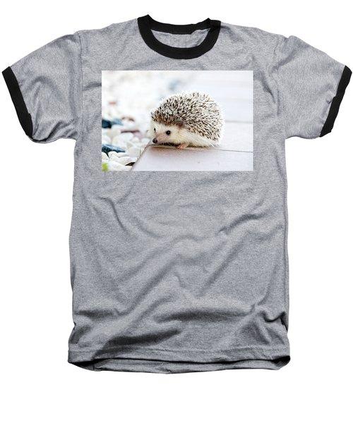Cute Hedgeog Baseball T-Shirt
