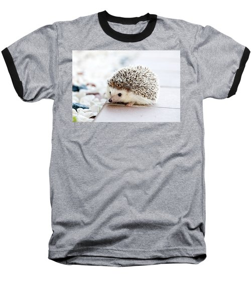 Cute Hedgeog Baseball T-Shirt