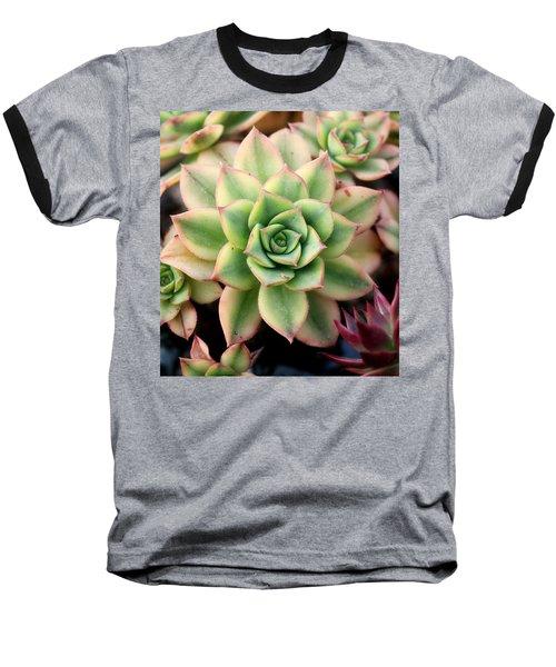 Cute Succulent Baseball T-Shirt