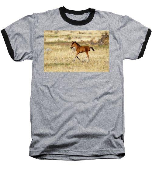 Cute Wild Bay Foal Galloping Across A Field Baseball T-Shirt
