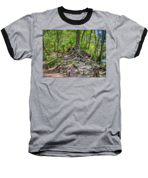 Cypress Roots Exposed Baseball T-Shirt
