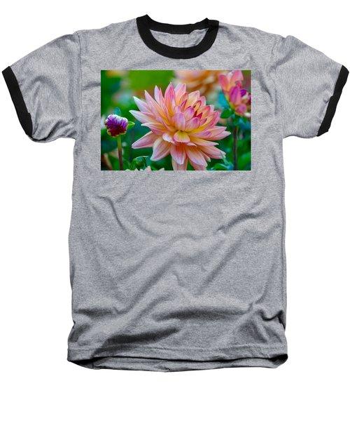 Dahlia Splendor Baseball T-Shirt